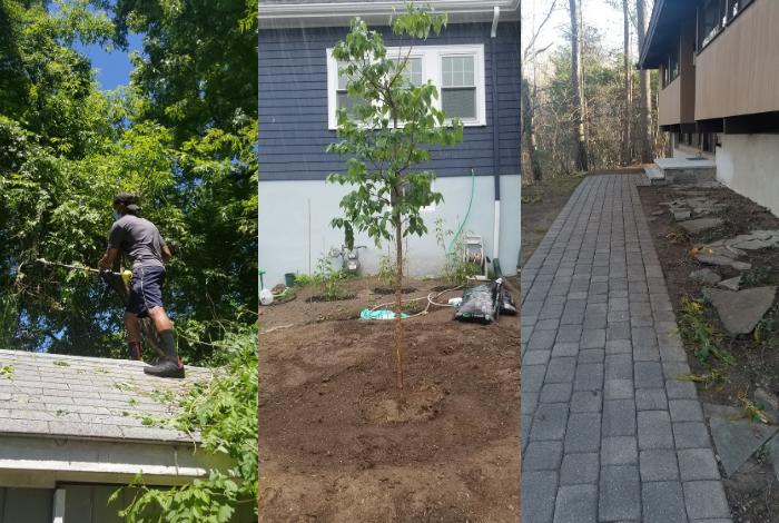 AdamHelper handyman services boston landscaping company cambridge landscaper melrose medford somerville weeds lawn mowing help taskrabbit yard work helper